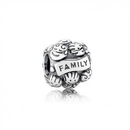 Pandora Jewelry Love & Family Charm 791039