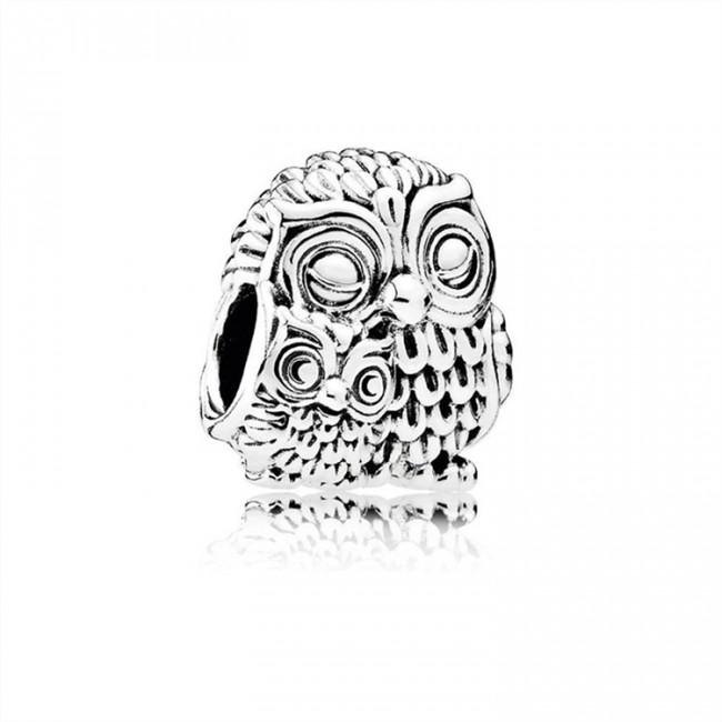Pandora Jewelry Charming Owls Charm 791966